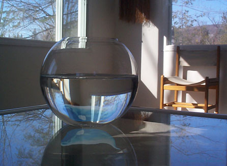 Glass Bowl Beluga