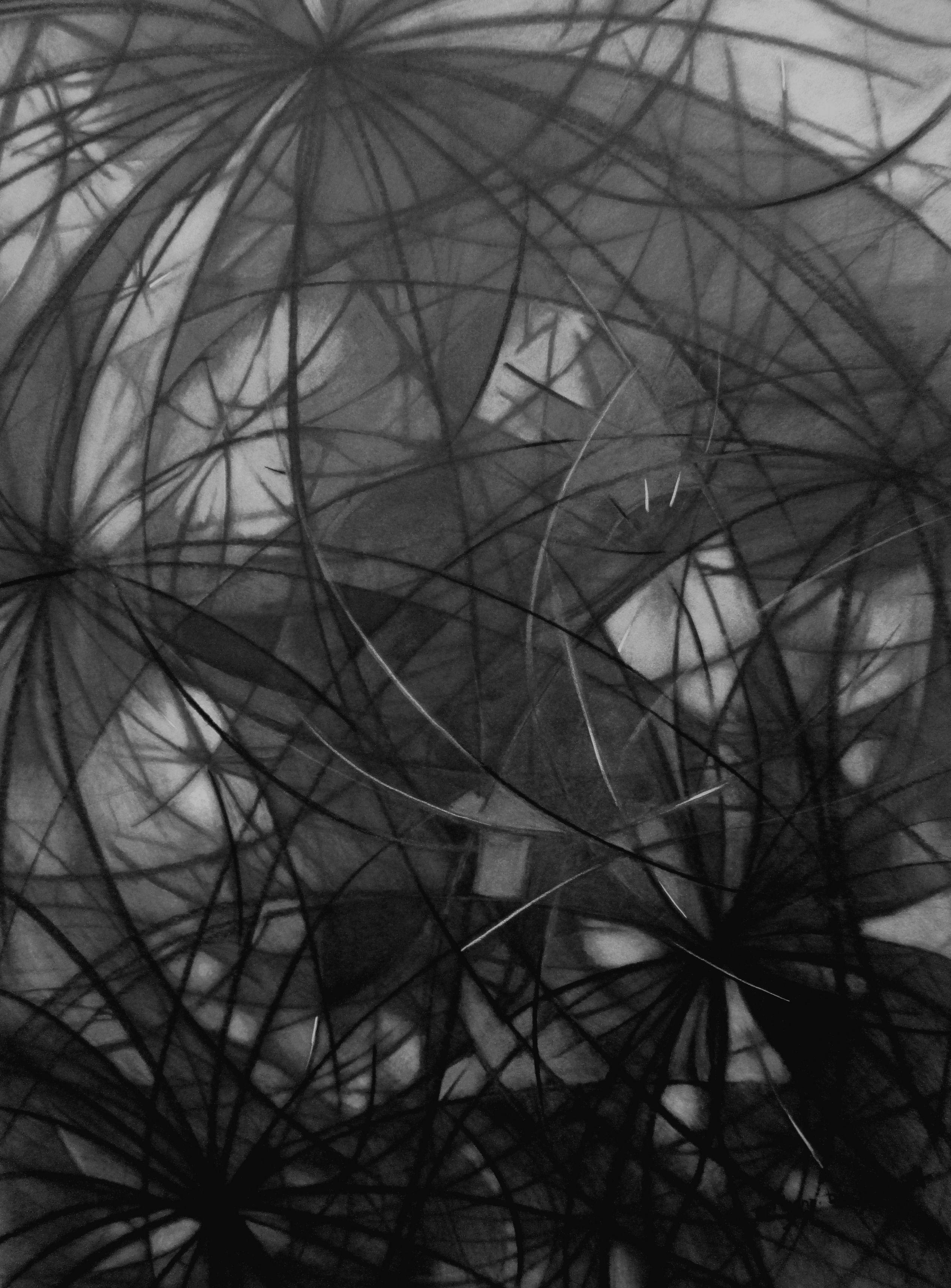 Synaptic Web